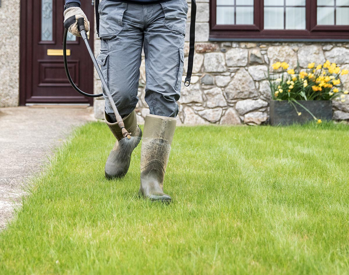 Fertilizing-tips-in-tex-and-featuredt