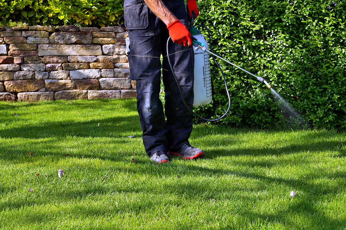 Lawn-chemicals-in-text