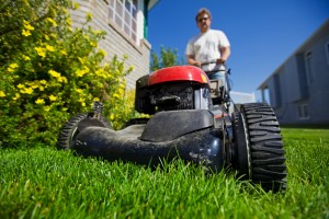 Maintain your lawn, 8 Easy Yard Care Tips to Help Sell Your Home